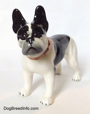 The front left side of a black and white vintage 1970s TMK 5 Boston Terrier figurine. The figurine has weak face details.