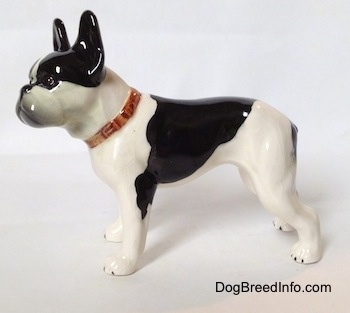The left side of a black and white vintage 1970s TMK 5 Boston Terrier figurine. The figurine is glossy.