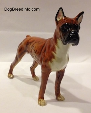The front right side of a 1970s brown with black and white Boxer dog figurine. The eyes of the figurine are hard to differentiate from the face.