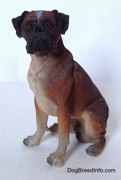 The left side of a brown with black and white Boxer figurine in a sitting pose and it is made out of resin. The figurine has great details.
