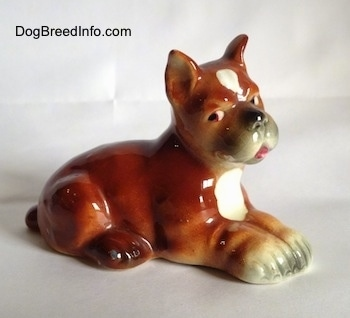 The right side of a brown with white and black Boxer puppy figurine. The paws of the figurine are attached together.
