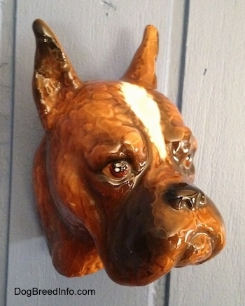 The front left side of a fawn Boxer dog head wall mount. The eyes of the figurine is very detailed.