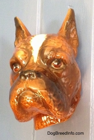 A fawn Boxer dog head wall mount. The figurine has fine face details.