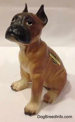 The front left side of a brown with black and white Boxer puppy figurine. There is a sticker on the left side of the figurine.
