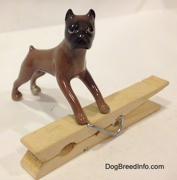 The front right side of a brown with black Boxer dog figurine that is placed on top of a clothespin.