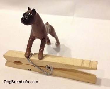 The front left side of a brown with black Boxer dog figurine that is placed on top of a clothespin. The figurine has a black muzzle.