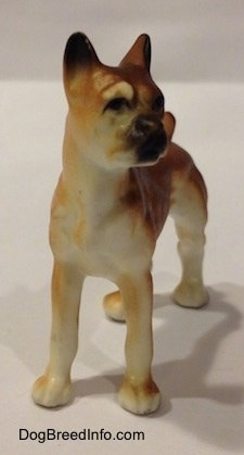 The front right side of a bone china brown with white and black Boxer dog. The figurine has great face details.