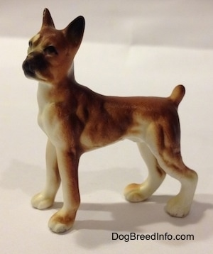 The left side of a bone china brown with white and black Boxer dog figurine. The figurine has great details in its body.