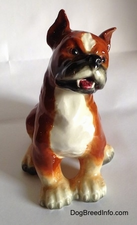 A porcelain brown with white and black Boxer dog figurine. The figurine has very detailed eyes.