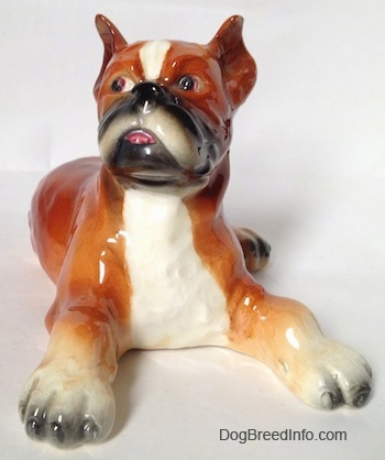 A fawn and white with black Boxer dog figurine in a laying pose. The figurine has its tongue painted to look like it is sticking out of its mouth. The dog has perk ears and a black nose.