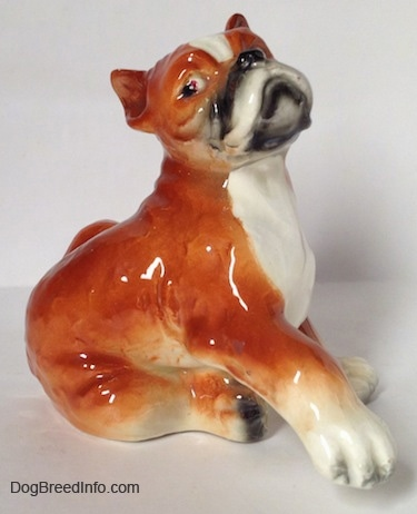 The right side of a porcelain brown with white and black Boxer dog figurine. The figurine has a detailed face.