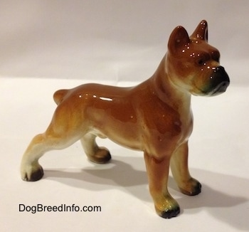The right side of a brown with black and white ceramic Boxer dog figurine. The figurine is glossy.