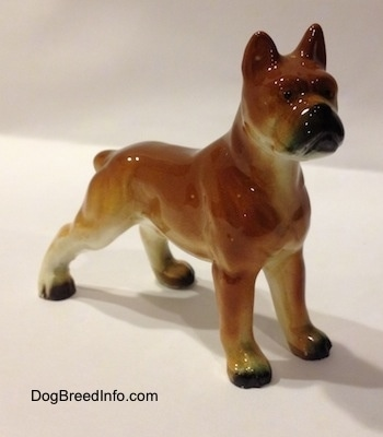The front right side of a brown with black and white ceramic Boxer dog figurine. The figurines paws are black.