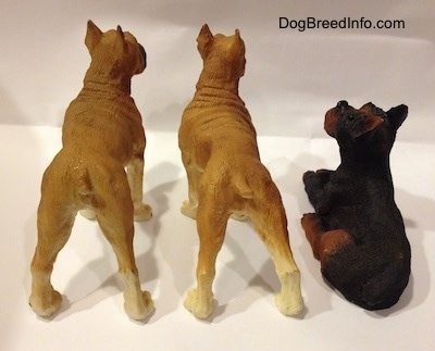 The back of two tan with white and black Boxer standing figurines are next to a black with brown laying Boxer figurine.