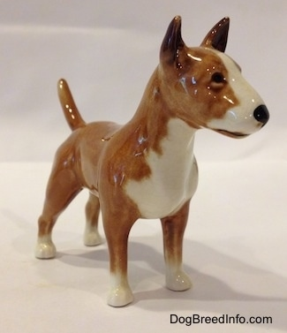 The front right side of a brown with white Bull Terrier figurine. The figurine has black circles for eyes and a nose. The dog has a wide muzzle with a shallow stop and a black nose. It has white down the center of its snout.