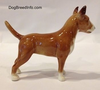 The right side of a brown with white Bull Terrier figurine. The figurine is glossy. The dogs body is tan and its paws are white.