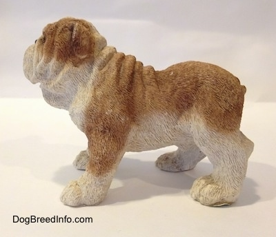 The left side of a brown and white ceramic mold of a Bulldog figurine. The figurine has a wrinkly face and back.