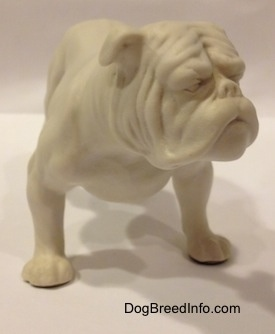 The front right side of a white bisque porcelain Bulldog figurine. The figurine has fine paw details.