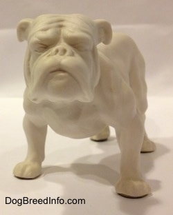 The front right side of a white bisque porcelain Bulldog figurine. The figurine has detailed arm definition.