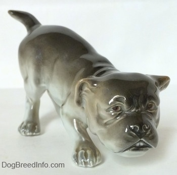 The front right side of a gray and white Bulldog figurine in a play bow pose. The Figurine has detailed brown eyes.