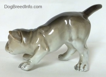 The left side of a gray and white Bulldog figurine in a play bow pose. The tail of the figurine has a medium sized tail.