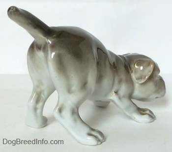 The back right side of a gray and white Bulldog figurine in a play bow pose. The figurines ears are easy to see against the head of the figurine.