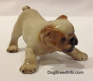 The front right side of a tan with brown Bulldog puppy figurine that is in a play bow pose. The figurine has small black lines for nails on the paws.