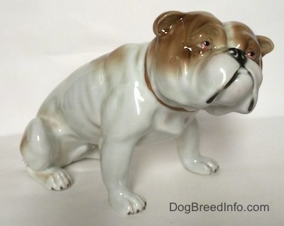 The front right side of a white with brown Bulldog figurine in a sitting pose. The ears of the figurine are easy to differentiate from the head.