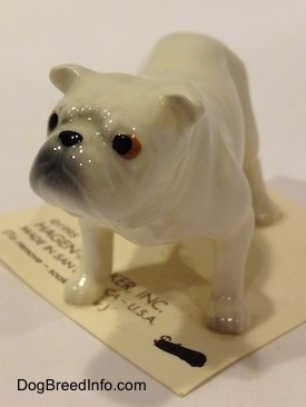 The front left side of a white miniature Bulldog figurine. The figurine has fine paw details.