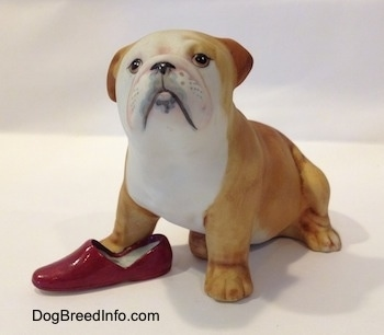A tan with white Bulldog puppy figurine that has a red slipper shoe under it. The face of the figurine is detailed.