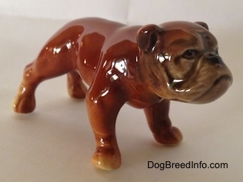 The front right side of a brown Bulldog figurine. The figurine has a detailed face.