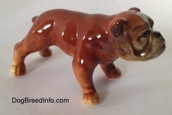 The front right side of a brown Bulldog figurine. The figurine has a wrinkly face.