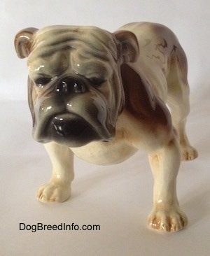 A wide-chested, brown and white with black Bulldog figurine. The figurine has black circles for eyes. The dog has a big head and a wrinkly face.