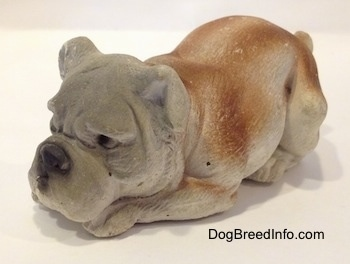 The front left side of a cement mold paperweight made that is a brown with white English Bulldog figurine that is laying down. The figurine has detailed eyes.