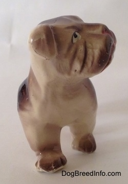 A brown and white ceramic Bulldog figurine. The figurine has fien paw details.