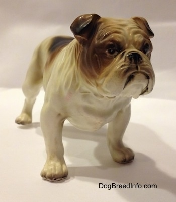 The front left side of a porcelain white with brown Bulldog figurine. The figurine is very detailed.