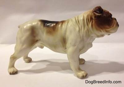 The right side of a porcelain white with brown Bulldog figurine. The figurine has a wrinkly neck.