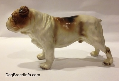 The left side of a porcelain white with brown Bulldog figurine. The figurine has great leg and paw details.