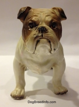 A porcelain white with brown Bulldog figurine. The figurine has a very detailed face.