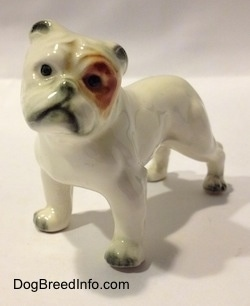 The front left side of a miniature white English Bulldog figurine with a brown spot over the eye. The figurine has black circles for eyes.