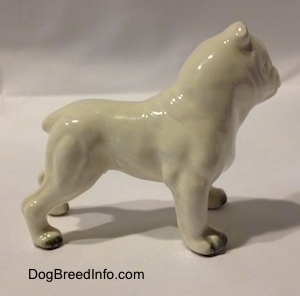 The right side of a miniature white English Bulldog with a brown spot over the eye. The figurine has fine paw details.
