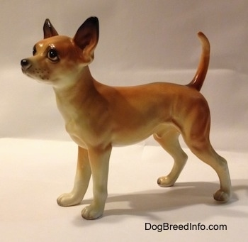 The left side of a porcelain tan with white Chihuahua figurine. The figurine has detailed eyes and a whisker dots around its muzzle.