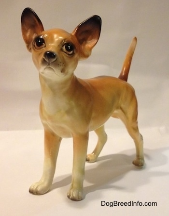 A porcelain tan with white Chihuahua figurine. The figurine has really detailed paws.