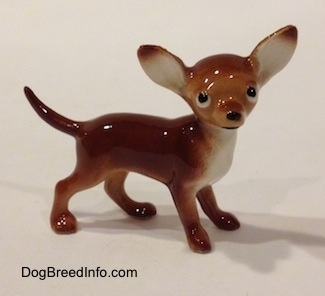 The right side of a brown with white Chihuahua figurine. The eyes of the figurine are black with white around the edges. Its head is round with a snout that sticks out to a point, a black nose and ears that are set wide apart and stand straight up.