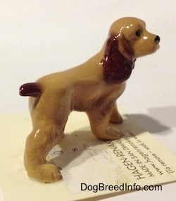 The back right side of a tan with brown ceramic Cocker Spaniel figurine. It has light hair brushings.
