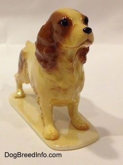 The front right side of a tan with brown ceramic Cocker Spaniel figurine. The eyes on the figurine are very expressive. It has a black nose and a shiny glaze.