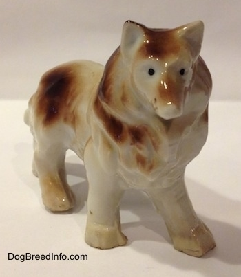The front right side of a brown and white porcelain Rough Collie figurine. The figurine has tiny black circles for eyes.