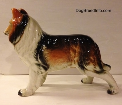 The left side of a black, brown and white ceramic Rough Collie figurine. The figurine is glossy.