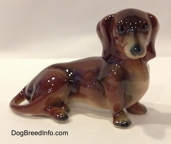 The right side of a brown and black Goebel Dachshund figurine in a sitting pose. The figurines tail wraps around to its leg.