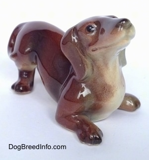 The front right side of brown with white Dachshund figurine in a play bow pose. The figurine has great face details.